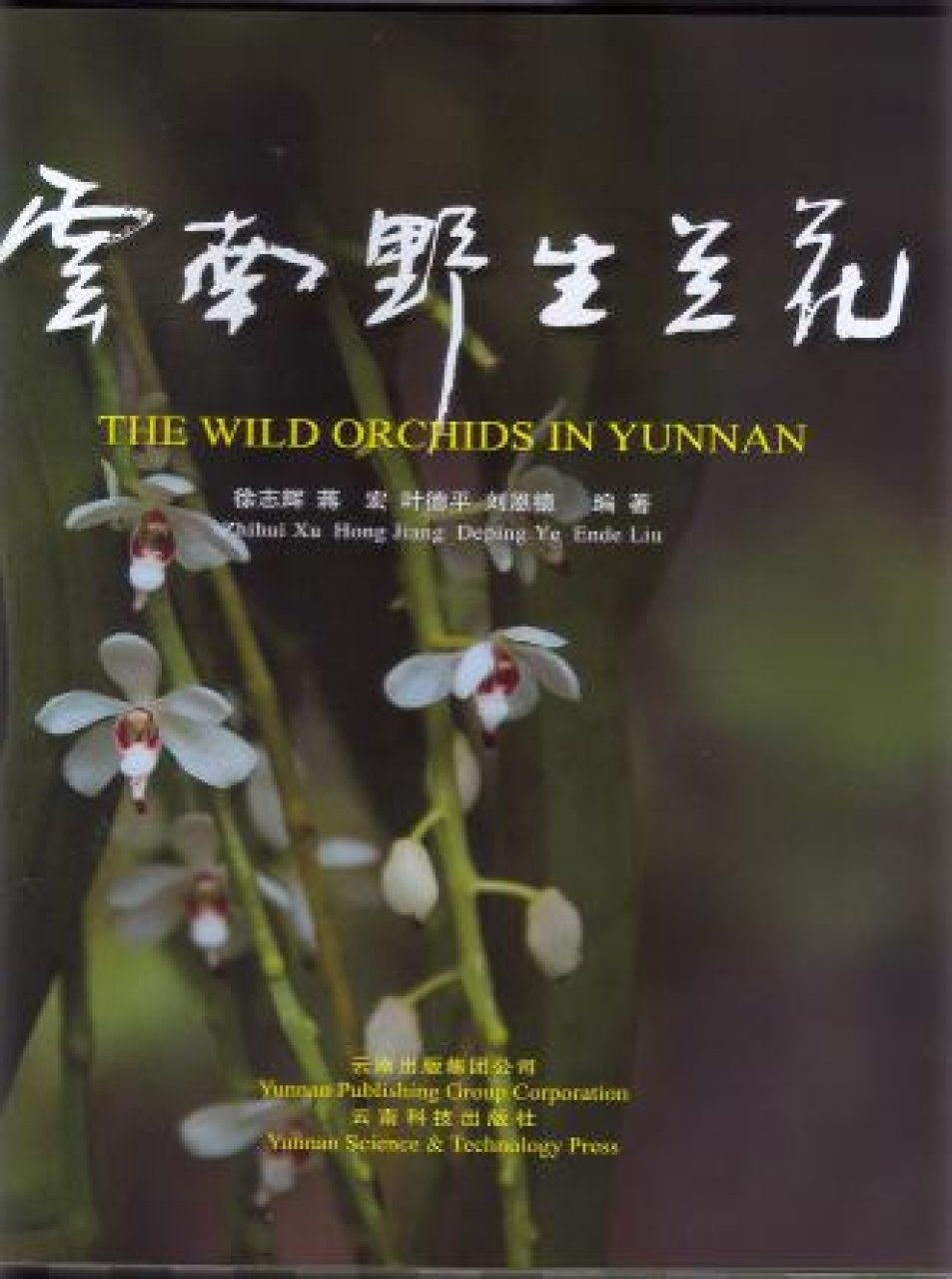 The Wild Orchids in Yunnan [Chinese]