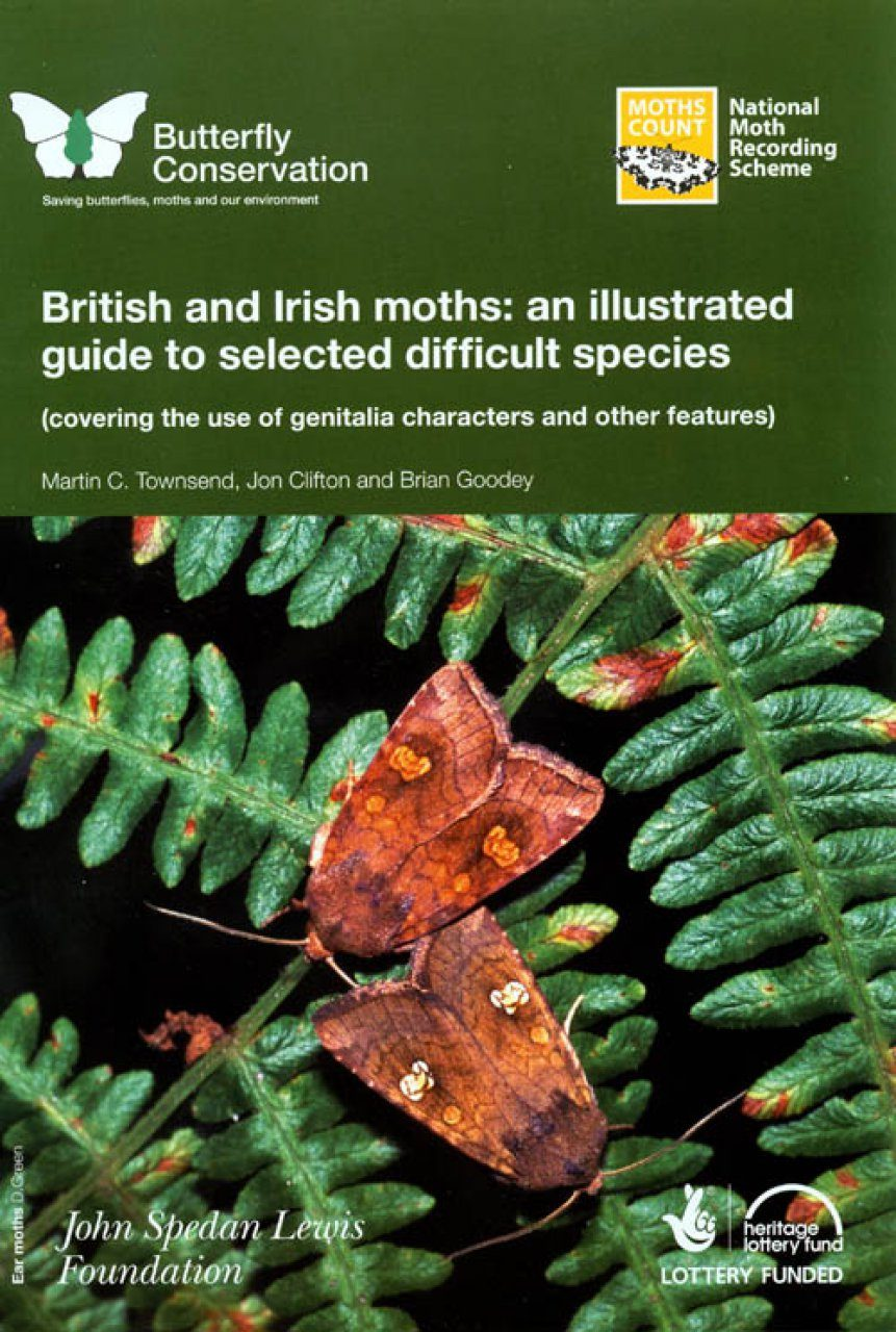 British and Irish Moths: An Illustrated Guide to Selected Difficult Species