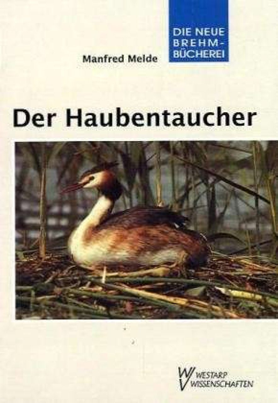 Der Haubentaucher (Great Crested Grebe)