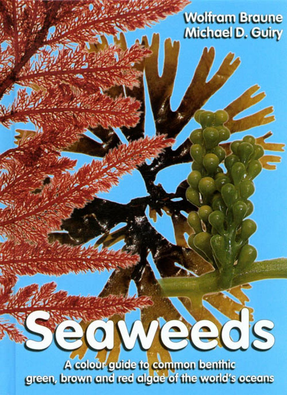 Seaweeds: A Colour Guide to Common Benthic Green, Brown and Red Algae of the World's Oceans