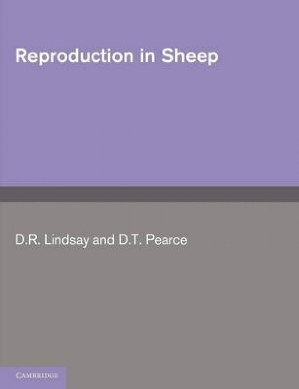 Reproduction in Sheep