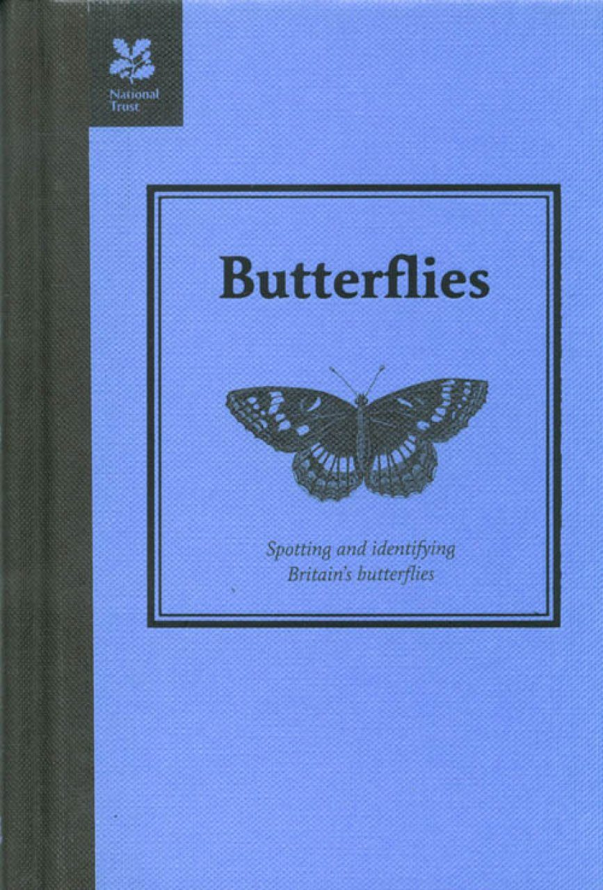Butterflies: Spotting and Identifying Britain's Butterflies