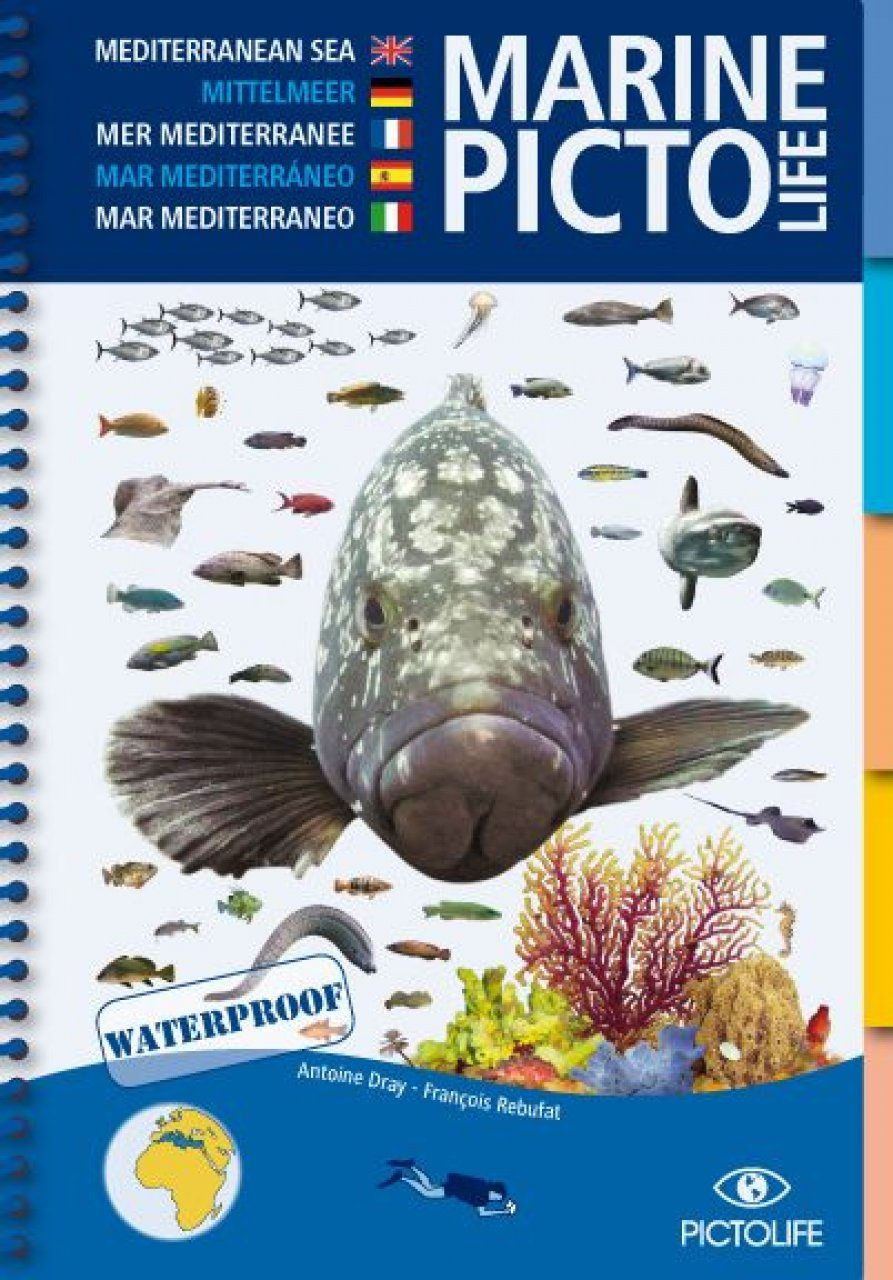 Marine Pictolife Mediterranean Sea [multilingual]
