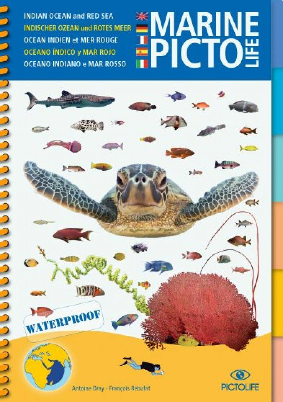 Marine Pictolife Indian Ocean and Red Sea [multilingual]