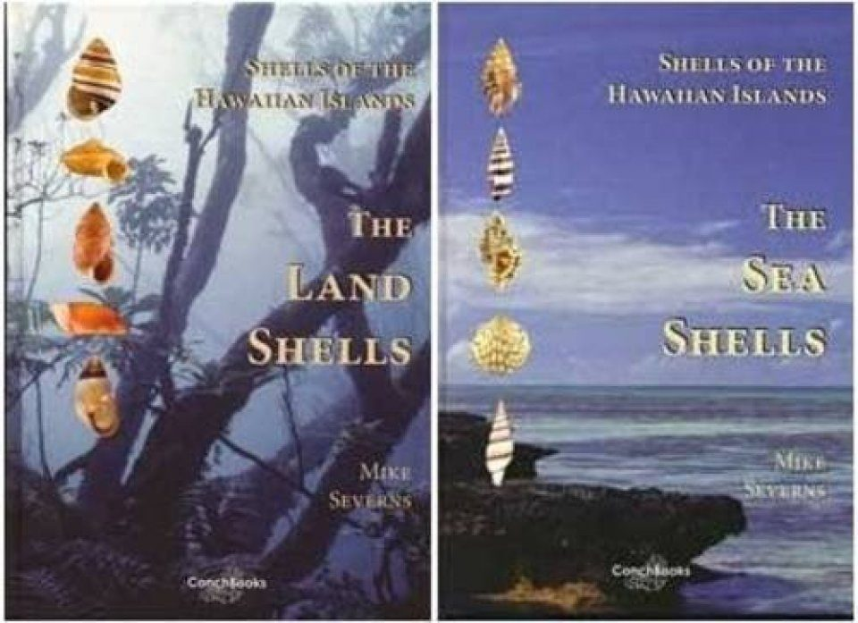 Shells of the Hawaiian Islands (2-Volume Set)