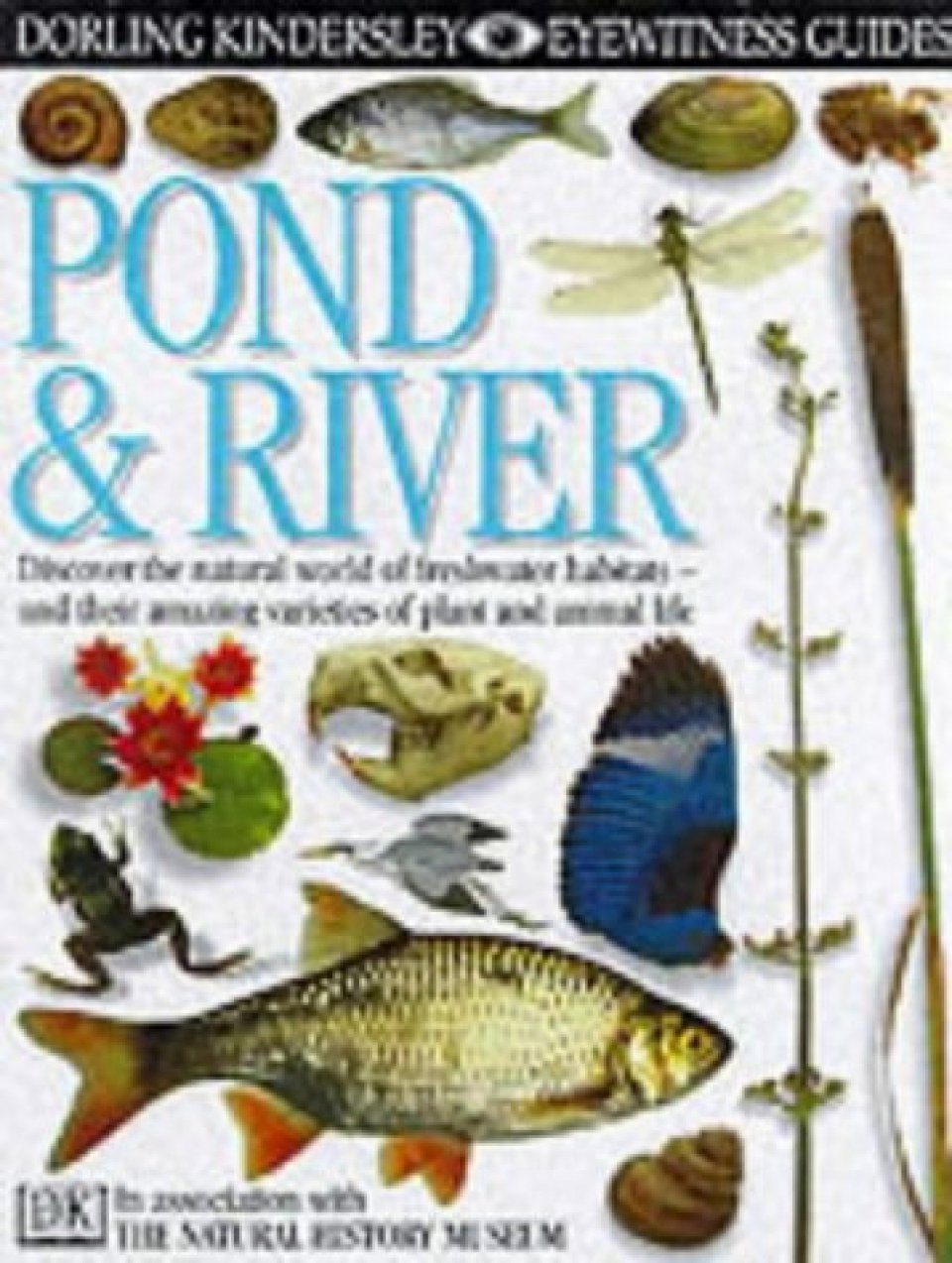 Eyewitness Guide: Pond and River