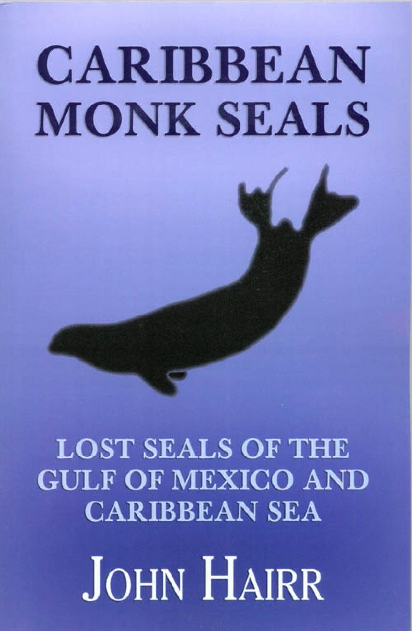 Caribbean Monk Seals Lost Seals Of The Gulf Of Mexico And Caribbean Sea