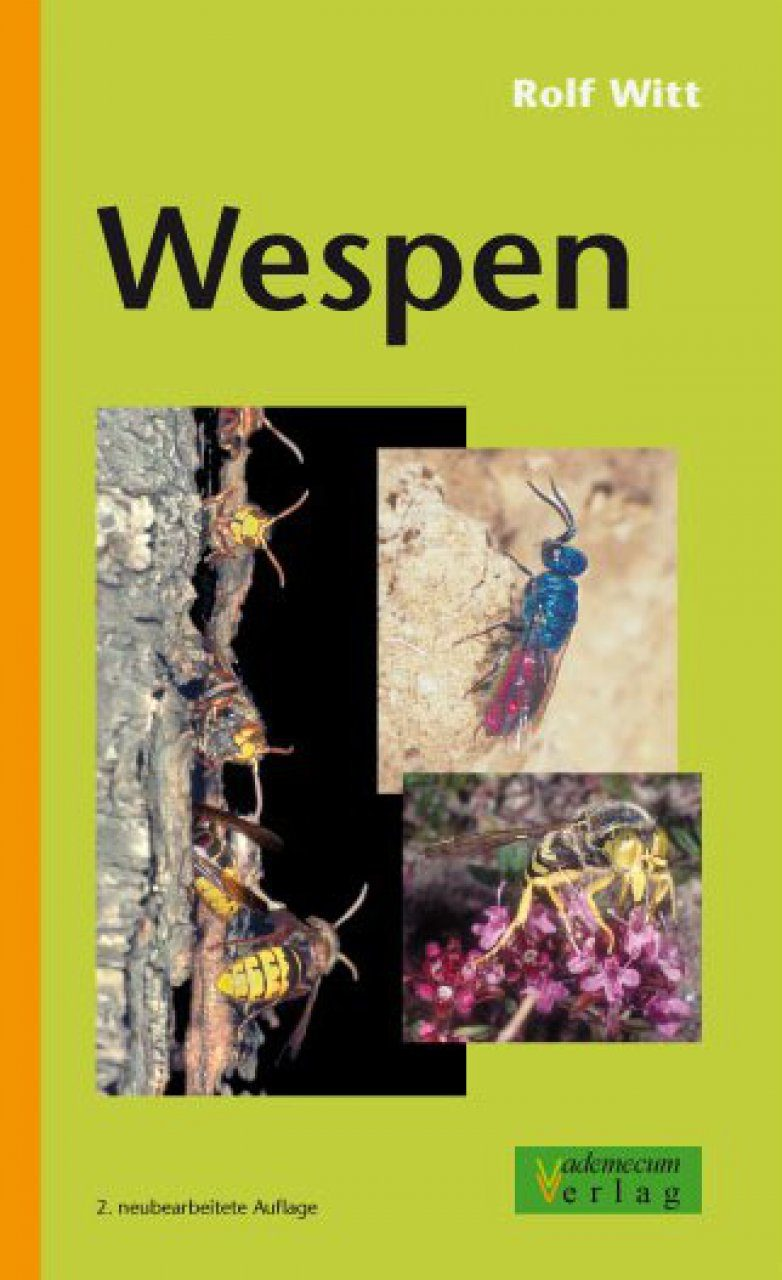 Wespen [German]