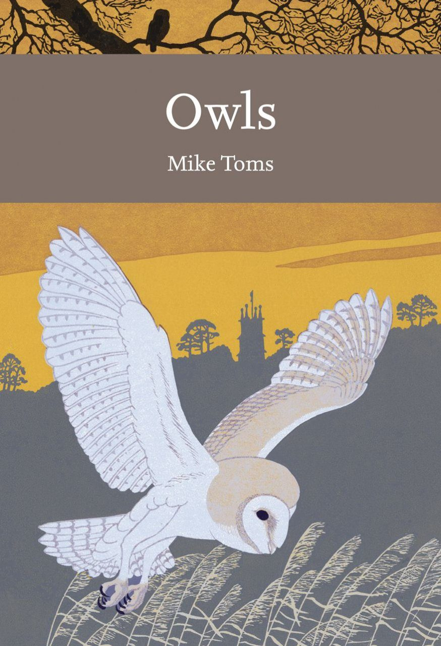 Owls: A Natural History of the British and Irish Species