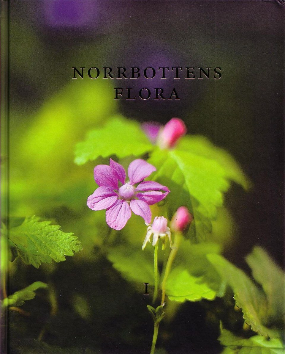 Norrbottens Flora Del 1 [The Vascular Plants in the Province of Norbotten, Volume 1]