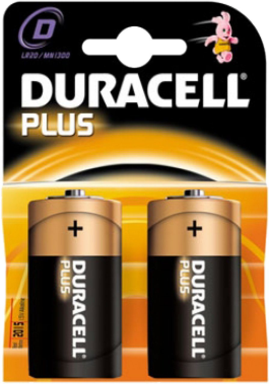 D-Cell Alkaline Battery (LR20): 2 Pack