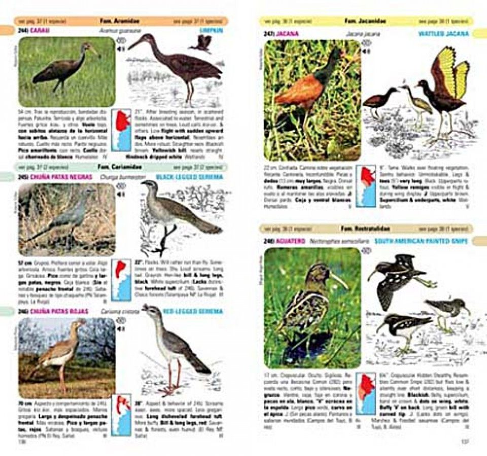 Birds of Argentina and Uruguay A Field Guide