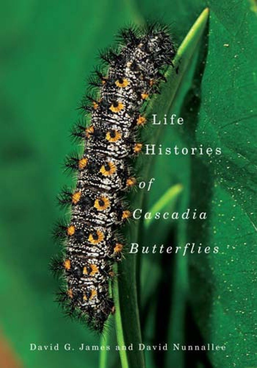 Life Histories of Cascadia Butterflies