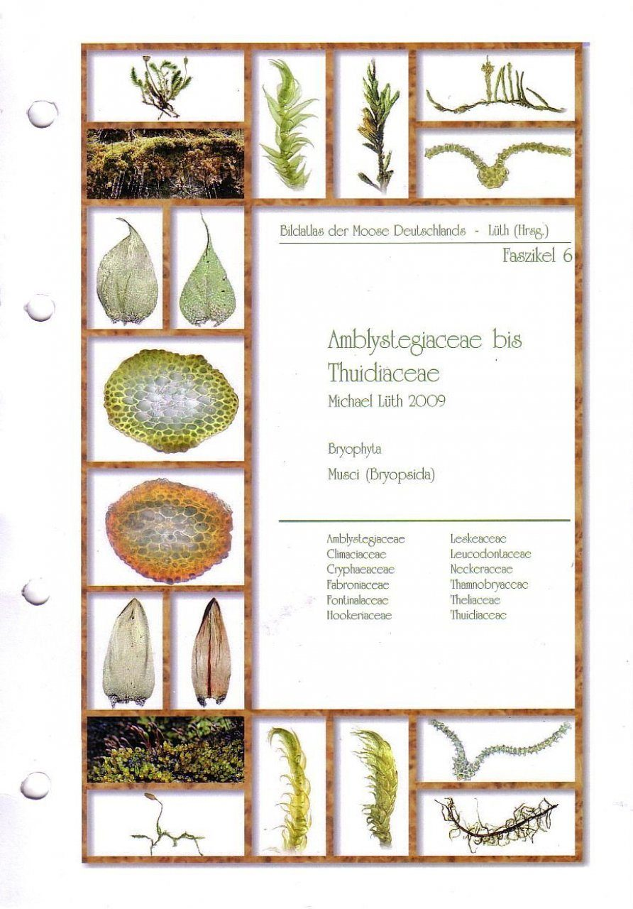 Bildatlas der Moose Deutschlands [Photographic Atlas of German Mosses], Fascicle 6