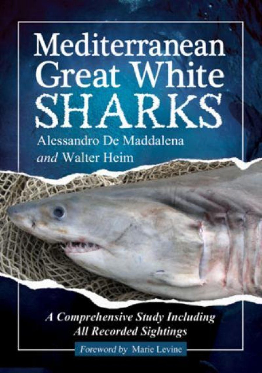 Mediterranean Great White Sharks A Comprehensive Study Including All Recorded Sightings