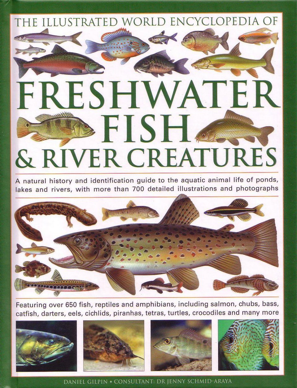 Freshwater World Records For Fish