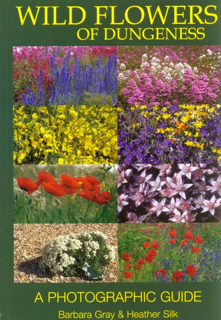 Wild Flowers Of Dungeness A Photographic Guide Barbara Gray