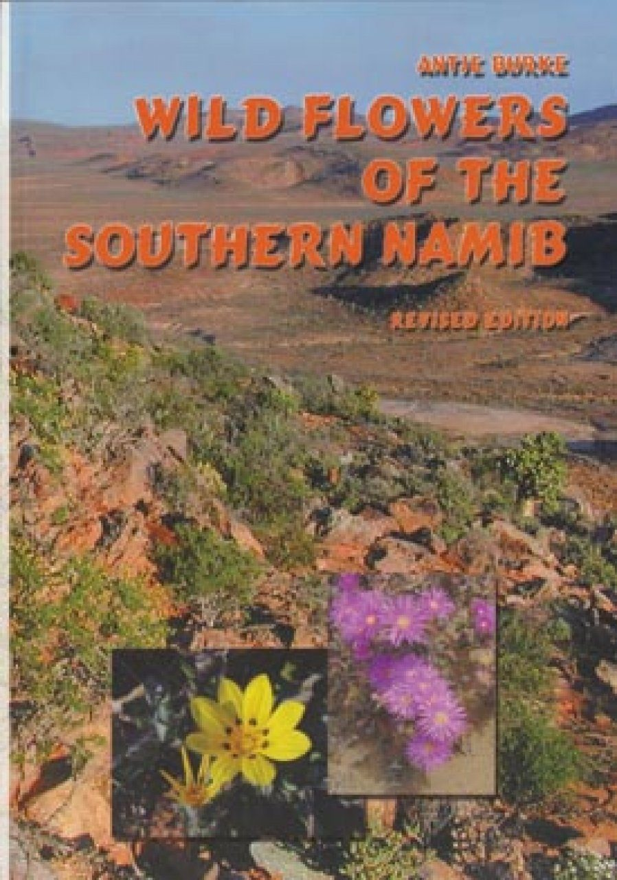 Wild Flowers of the Southern Namib