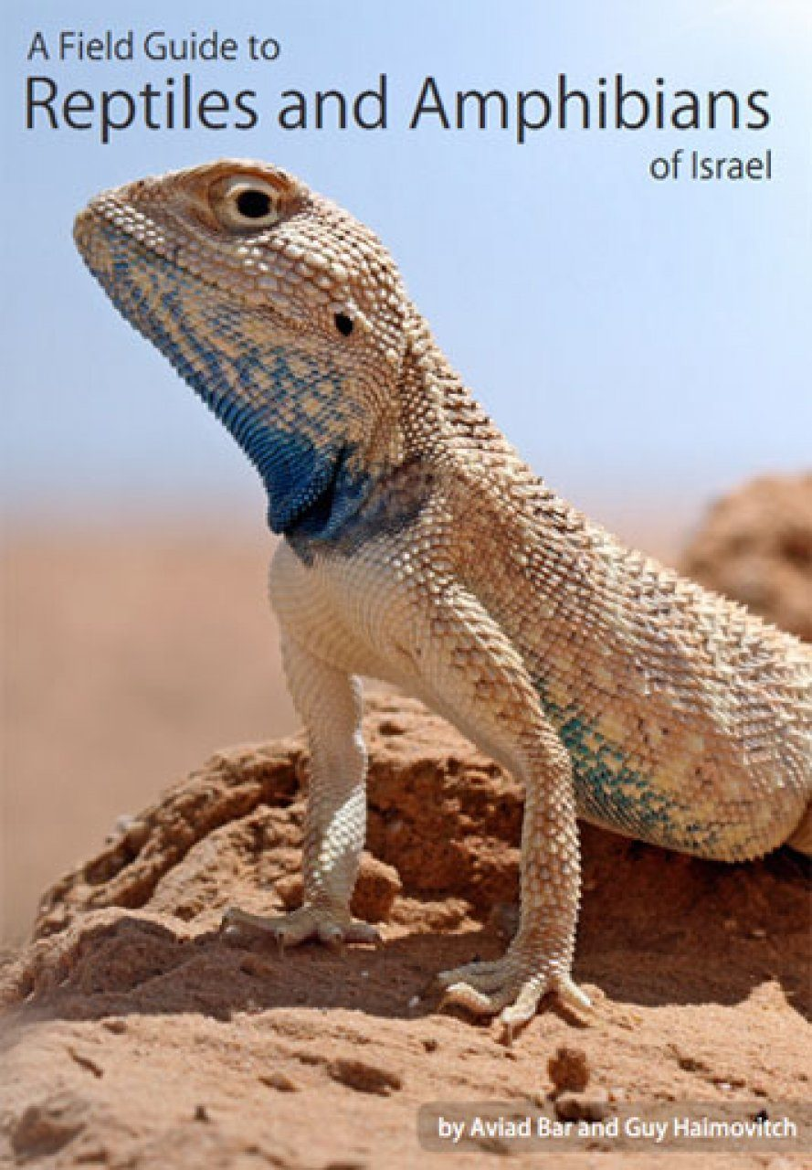 A Field Guide to Reptiles and Amphibians of Israel