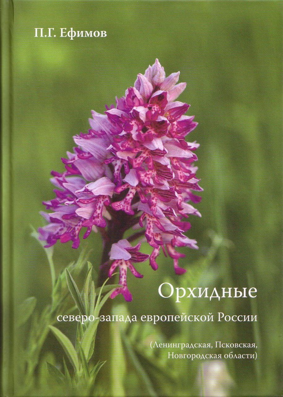 Orchids of North-West European Russia (in the Limits of Leningrad, Pskov and Novgorod Regions) [Russian]
