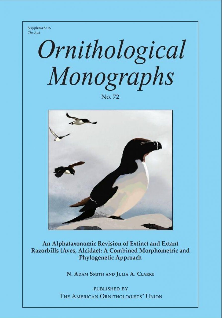 An Alphataxonomic Revision of Extinct and Extant Razorbills (Aves, Alcidae)