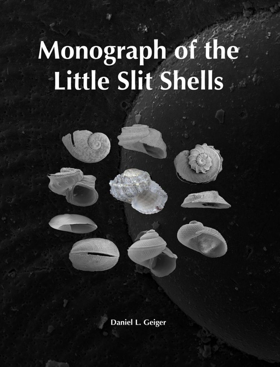 Monograph of the Little Slit Shells (2-Volume Set)