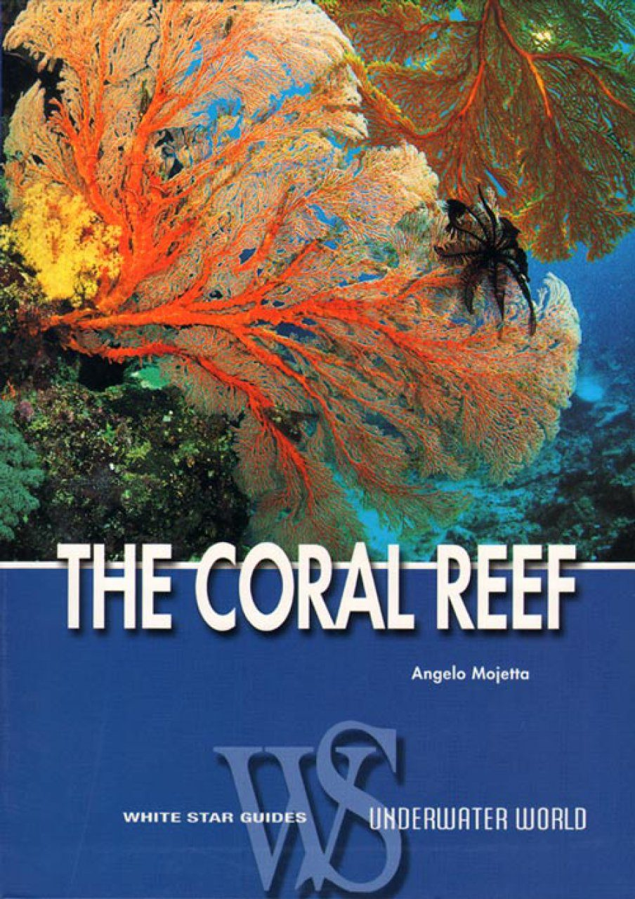 The Coral Reef