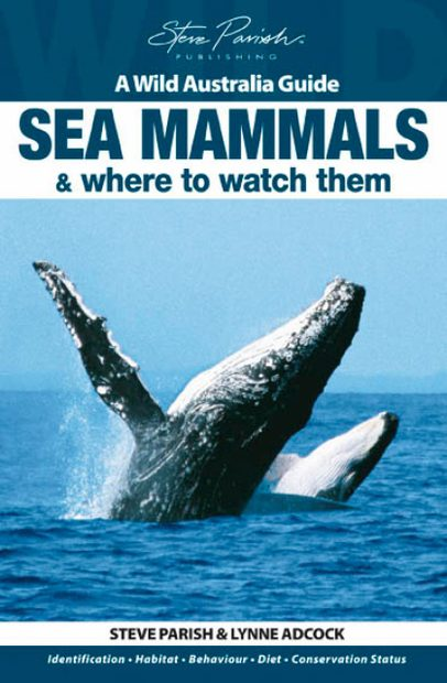 Wild Australia Guide: Sea Mammals & Where to Watch Them