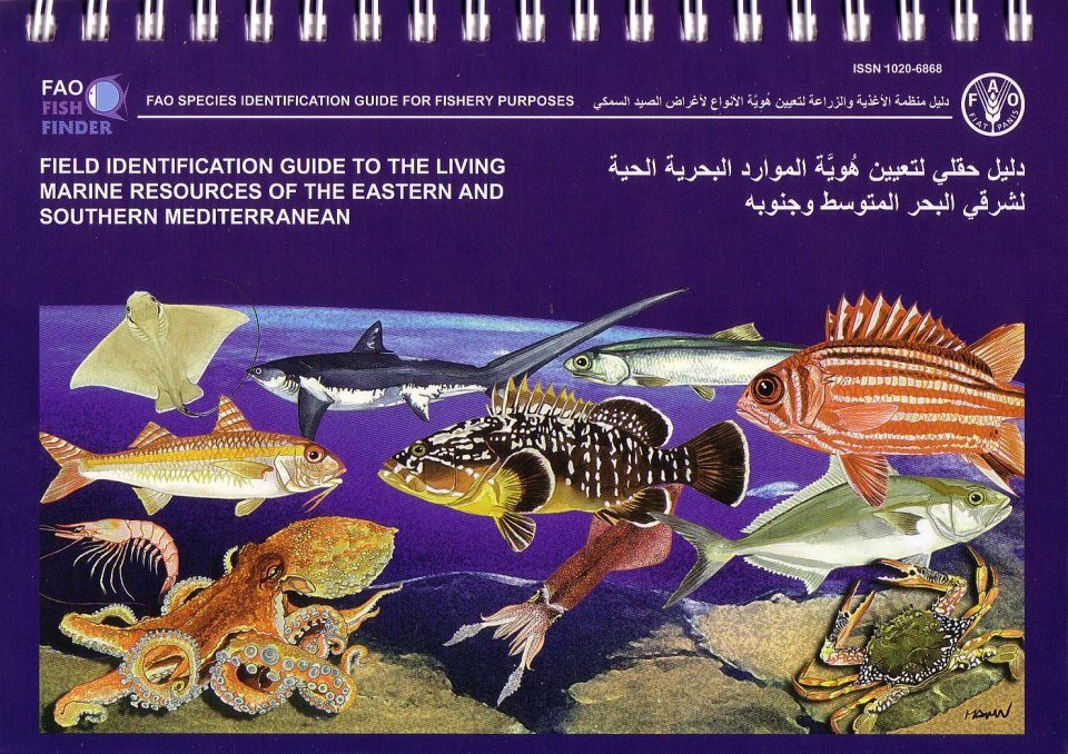 Field Identification Guide to the Living Marine Resources of the Eastern and Southern Mediterranean