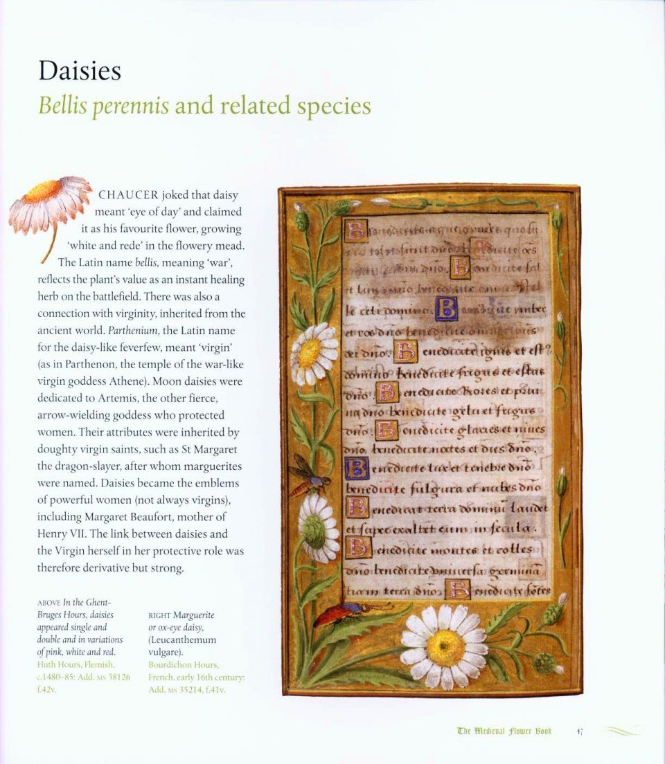 ... The Medieval Flower Book ...