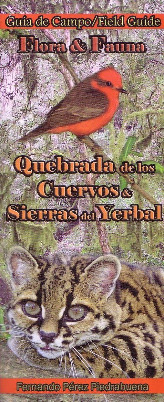 Flora & Fauna of the Crow Creek and Yerbal Sierras / Flora & Fauna de Quebrada de los Cuervos y Sierras del Yerbal