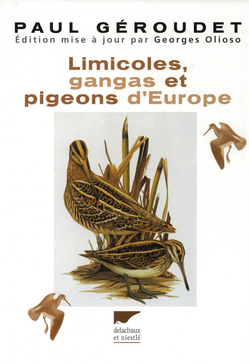 Limicoles, Gangas et Pigeons d'Europe [Waders, Gangas and Pigeons of Europe]