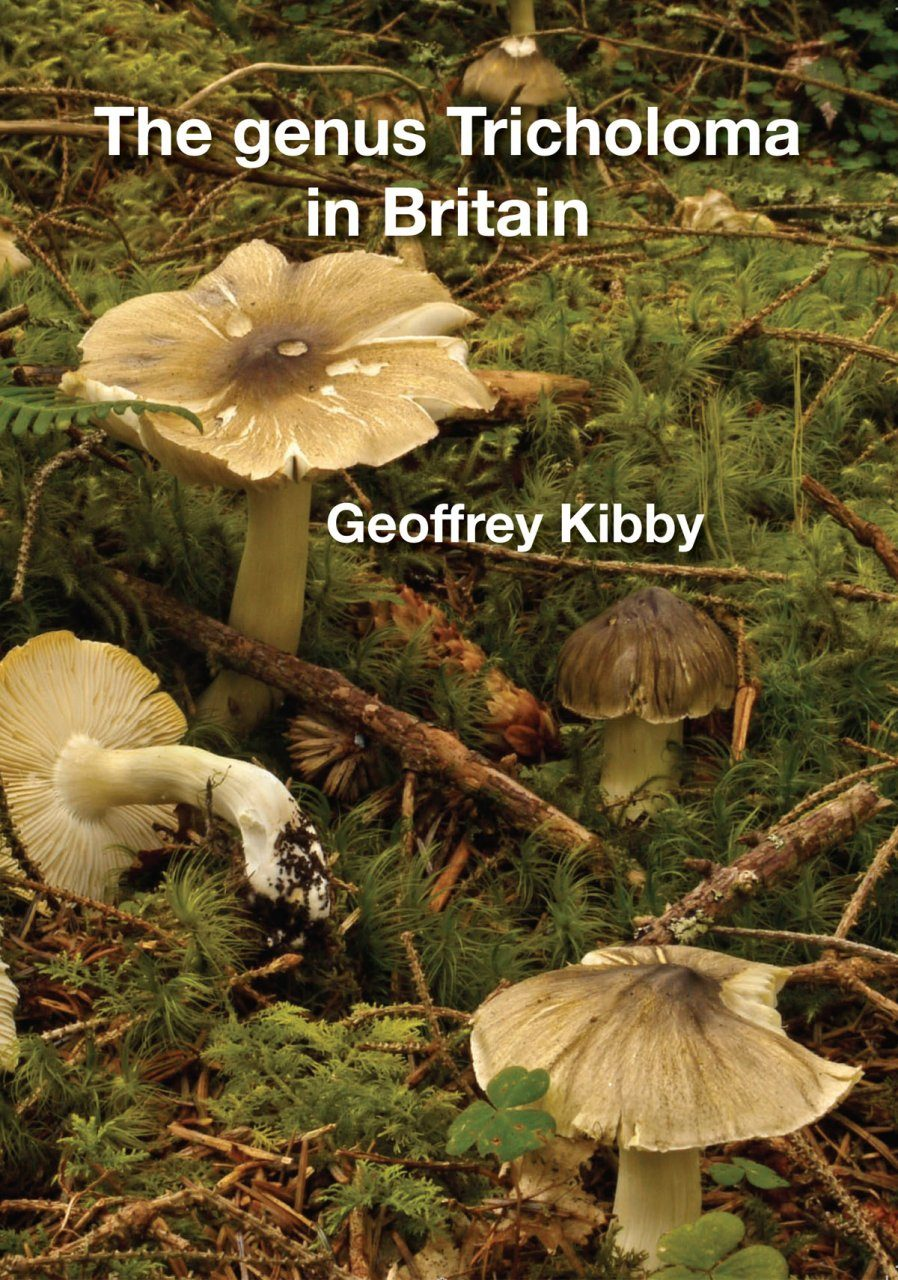 The Genus Tricholoma in Britain