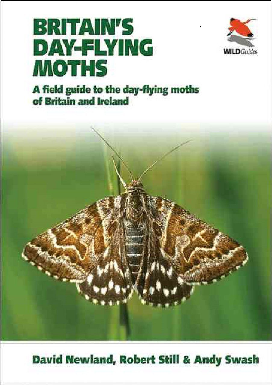 Britain's Day-Flying Moths