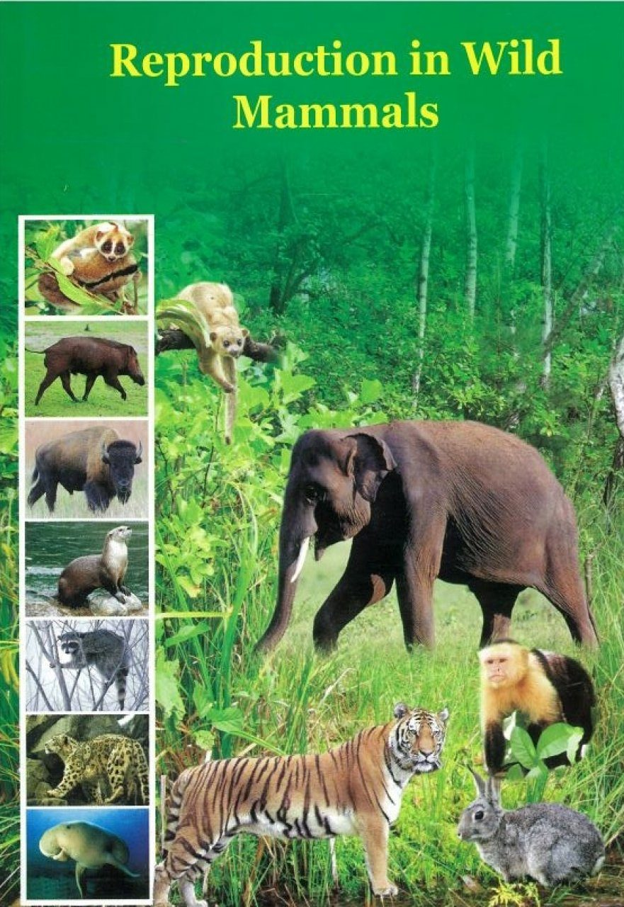 Reproduction in Wild Mammals