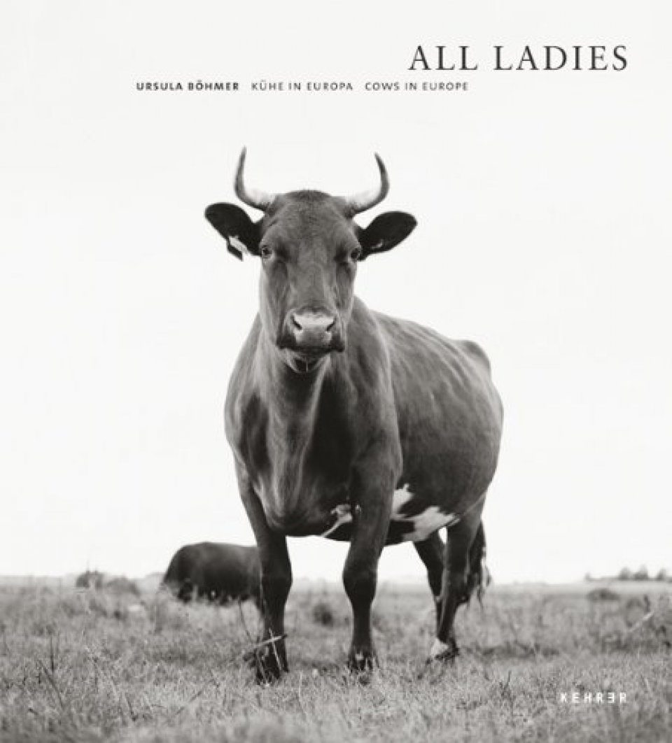 All Ladies: Cows in Europe / Kühe in Europa