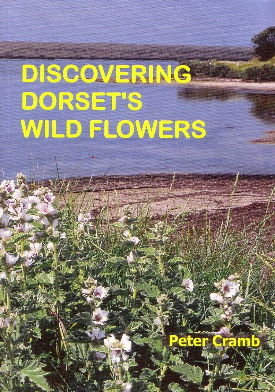 Discovering Dorset's Wild Flowers