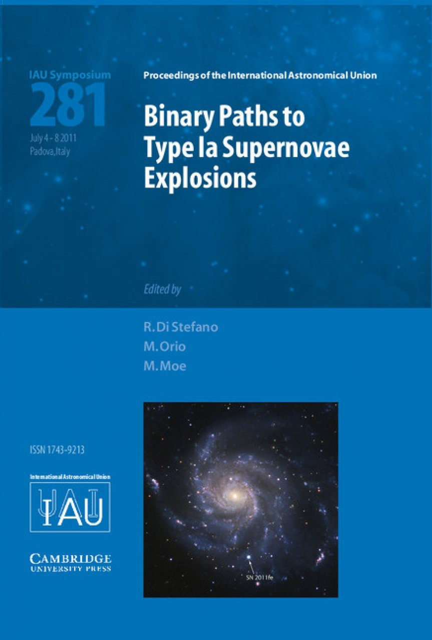 Binary Paths to the Explosions of Type Ia Supernovae