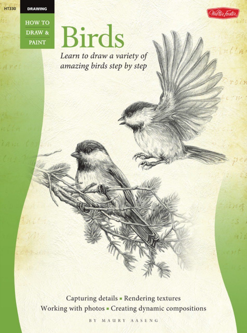 How to draw paint birds learn to draw a variety of for Learning to paint and draw