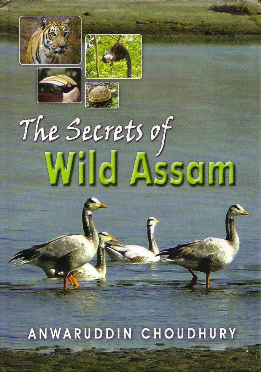 The Secrets of Wild Assam