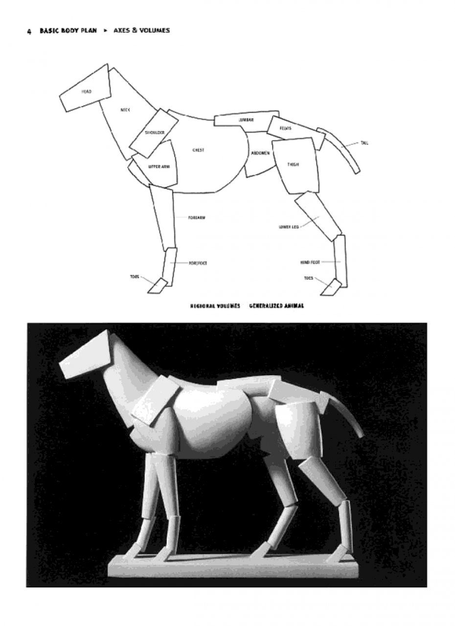 Animal Anatomy for Artists: The Elements of Form: Eliot Goldfinger ...