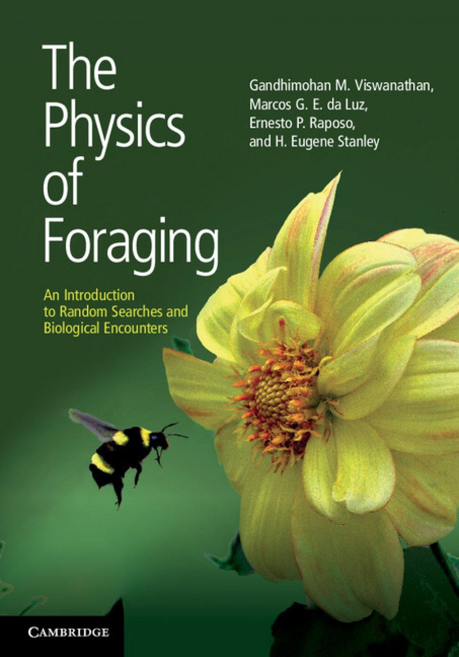 The Physics of Foraging
