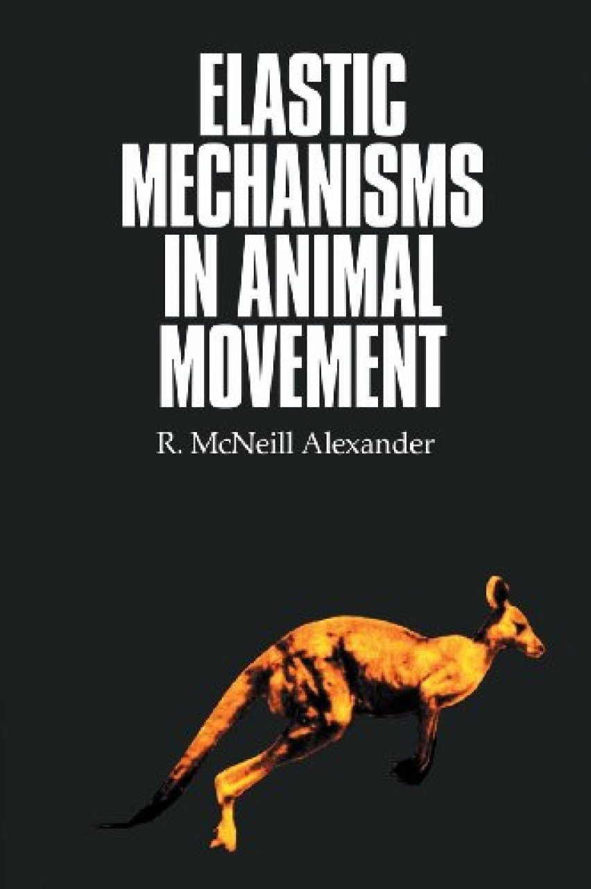 Elastic Mechanisms in Animal Movement
