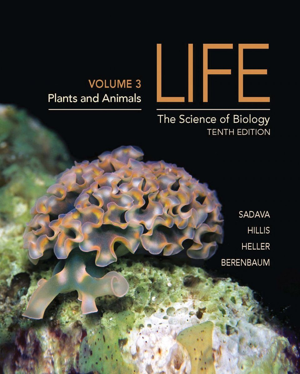 Life: The Science of Biology, Volume 3