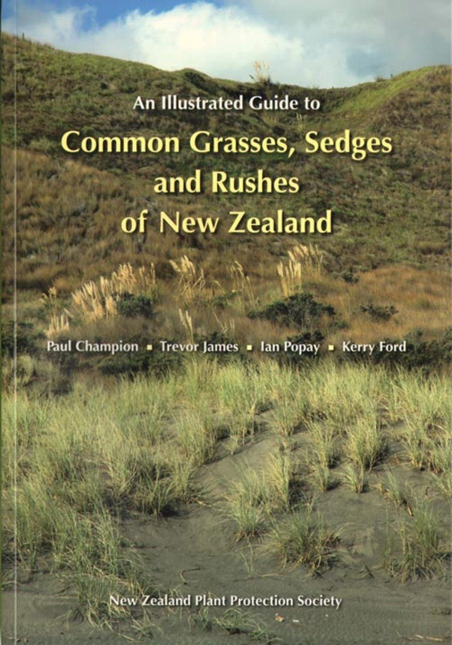 An Illustrated Guide to Common Grasses, Sedges and Rushes of New Zealand