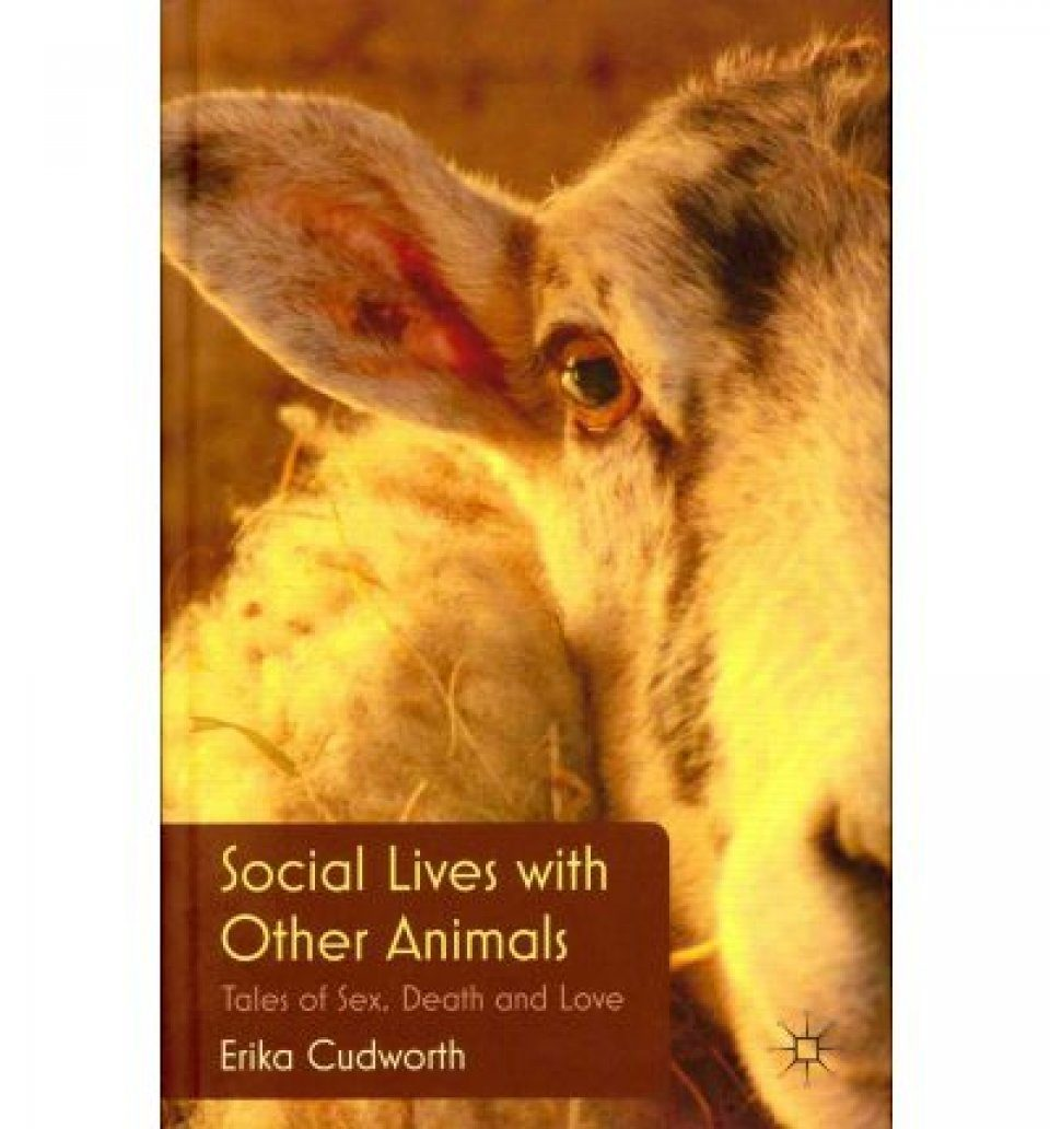 Social Lives with Other Animals