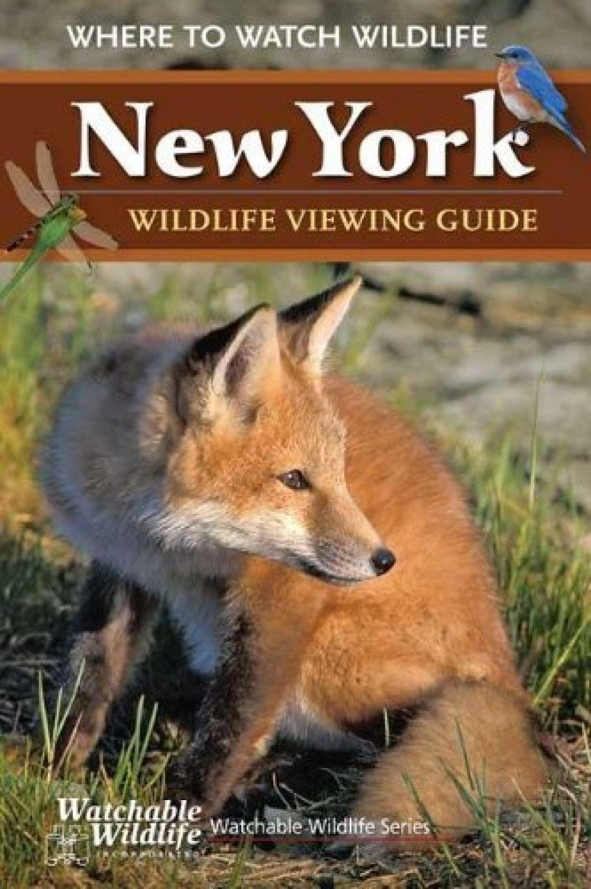 New York Wildlife Viewing Guide