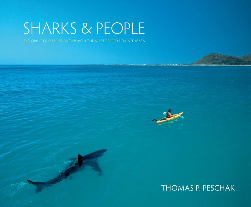 Sharks & People
