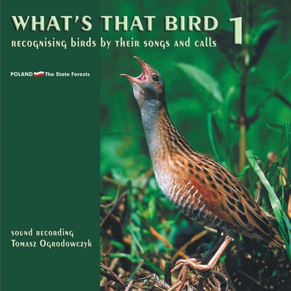 What's That Bird (4CD)