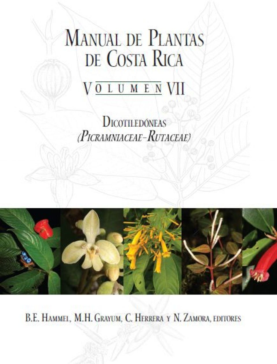 Manual de Plantas de Costa Rica: Volume VII